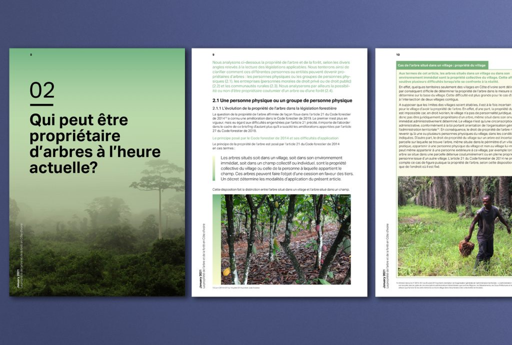 ClientEarth Forestry ownership Ivory Coast