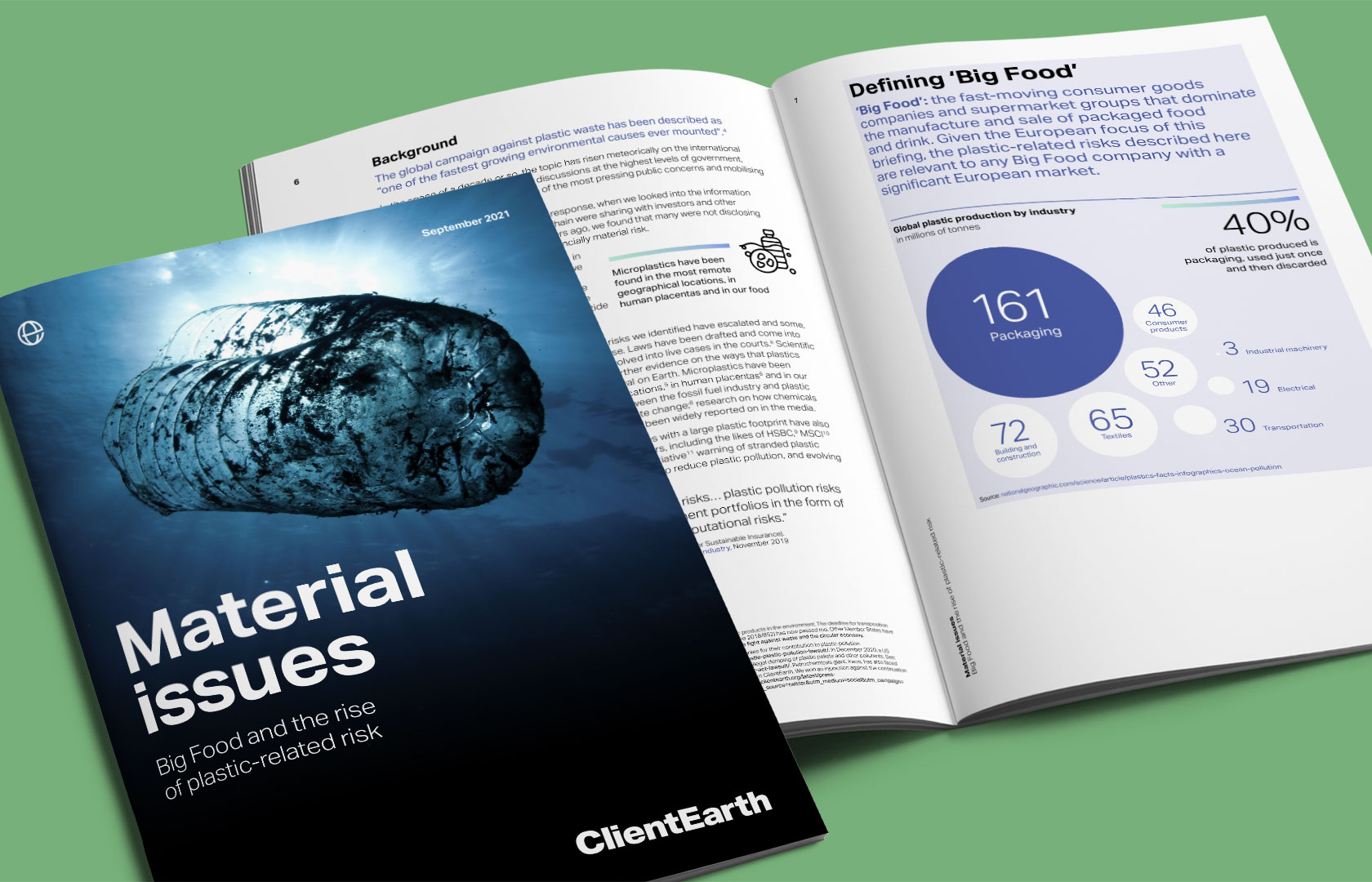 ClientEarth Material issues report